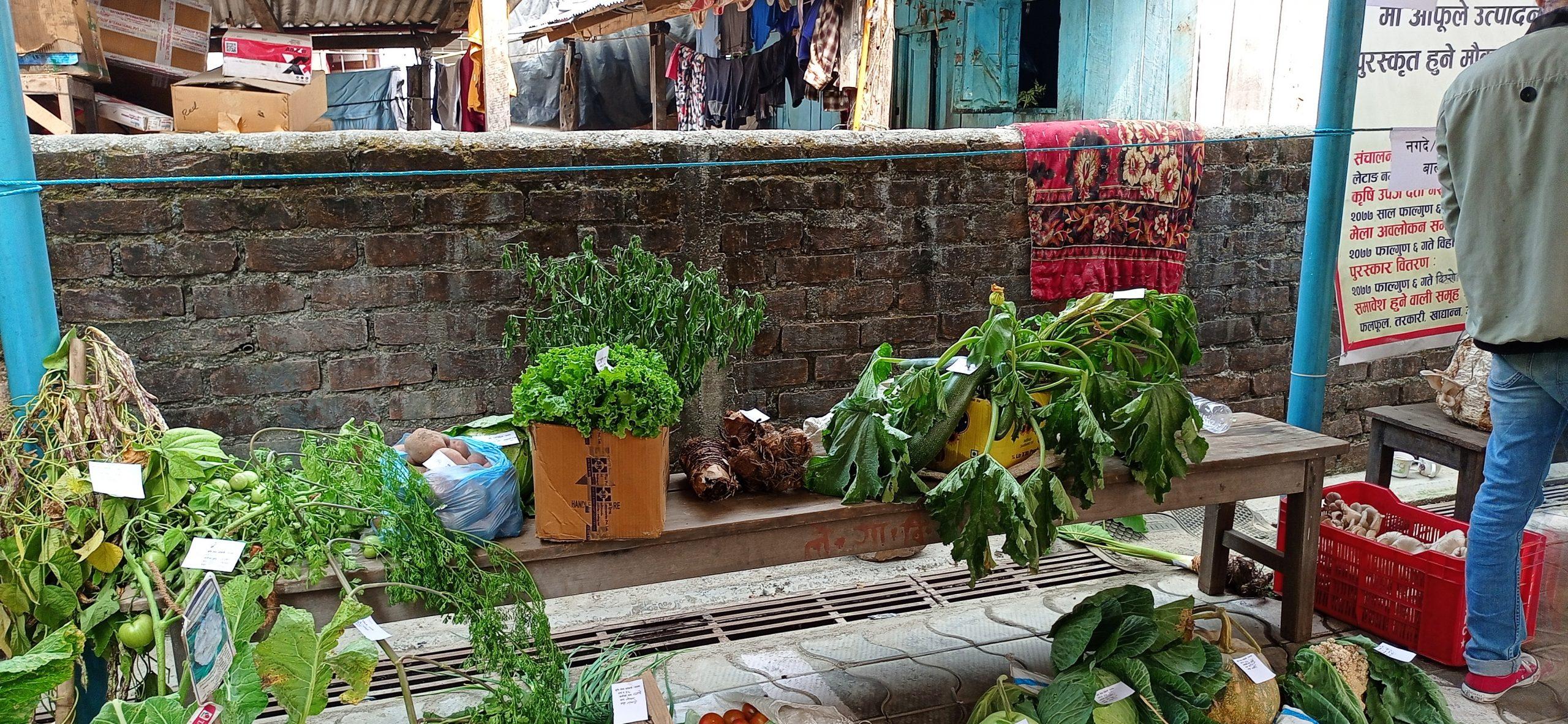 कृषि प्रदर्शनीमा  किसानकाे उल्लेख्य सहभागिता